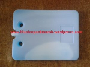 ice pack Murah Malang, www.blueicepaackmurah.wordpress.com, 082336973377